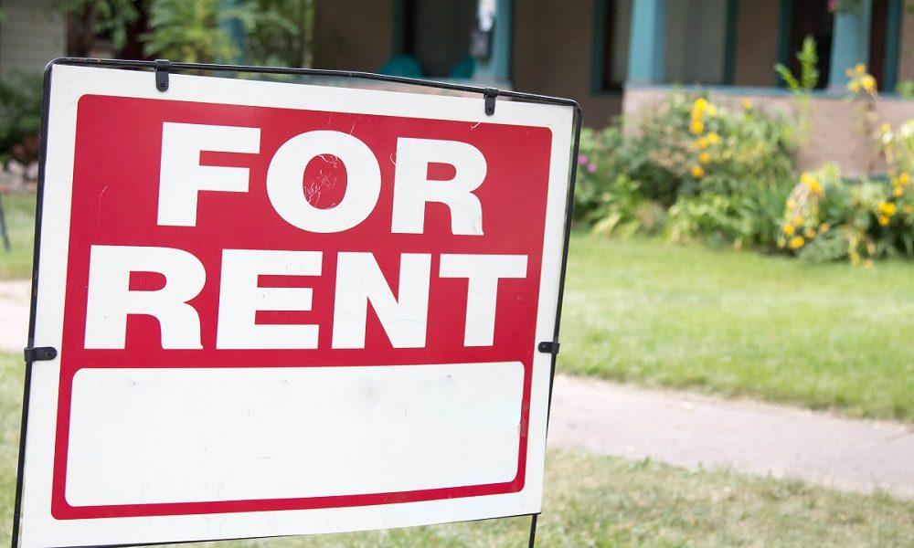 artificial grass rental property